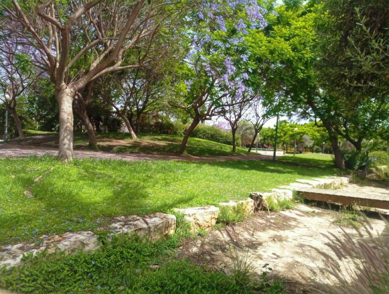 בית למכירה בבנה ביתך בקדימה גובל בפארק
