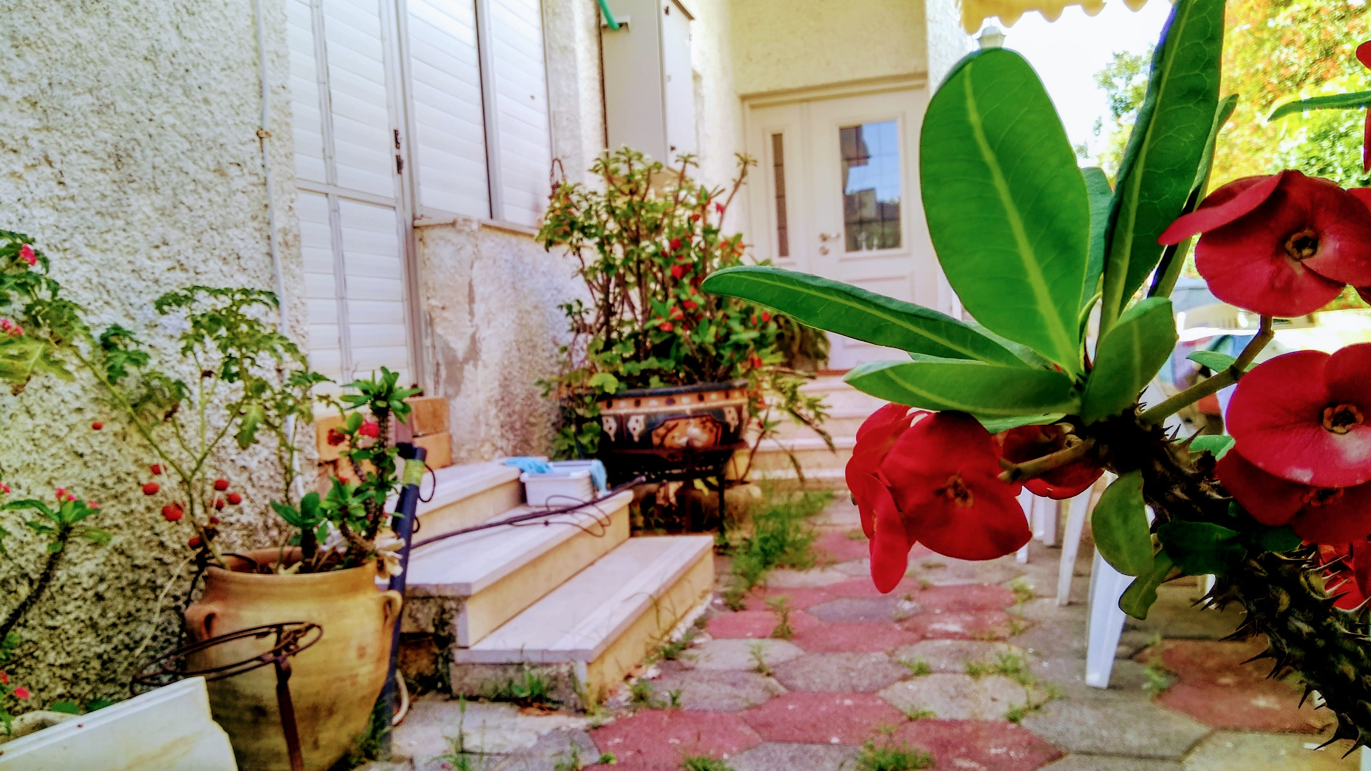 בית קטן חד מפלסי למכירה בקדימה בכפר